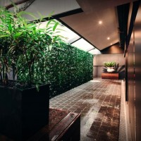 greenwall 1